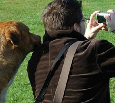 Love Me Love My Dog: Vets, Pets, Nudging and Behavioural Economics