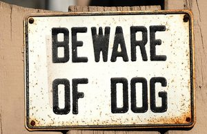 What's Breed Got To Do With It? 25 Years Of The Dangerous Dogs Act